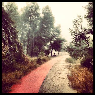 Correr por la «Via Verde»