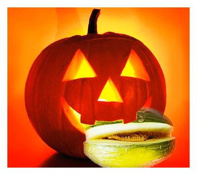 Halloween, las Pumpkins se comen los melones