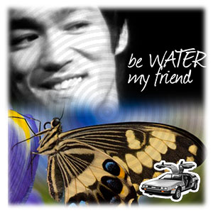 Movimiento de una mariposa en el agua