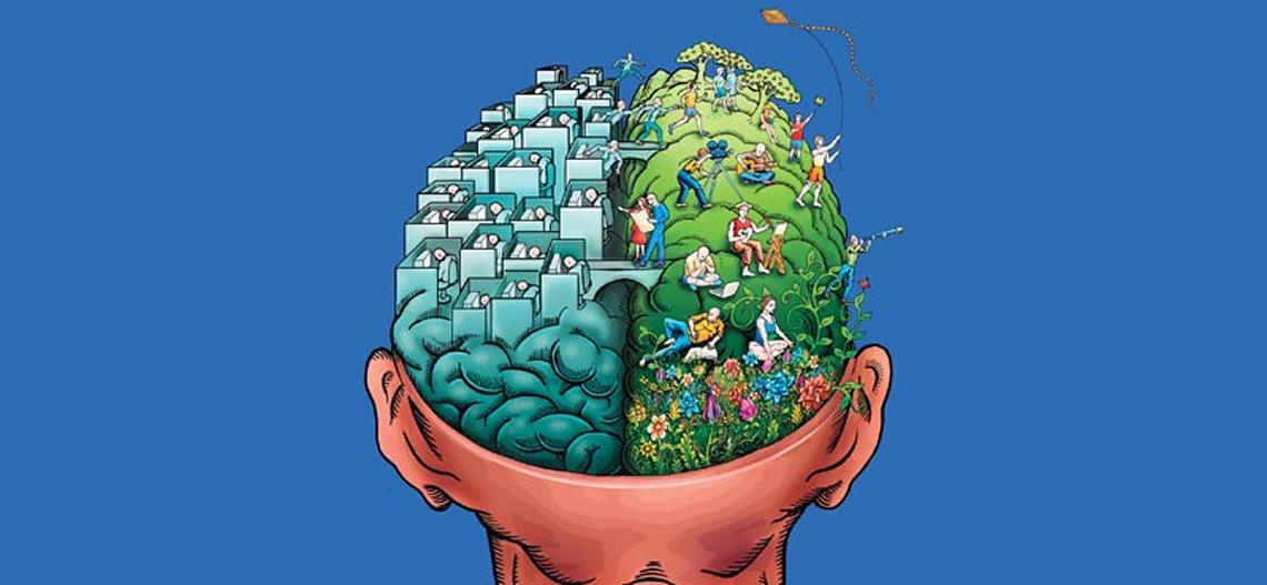 Cerebro rápido, cerebro lento
